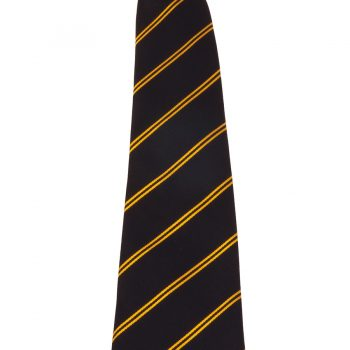 Castle School striped tie